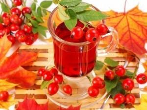 Чай из шиповника с медом