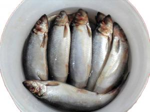 Рыба пряная