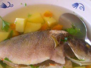 Блюдо дня: уха из морского окуня