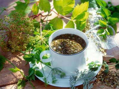 Донник, душица, иван-чай в медицине