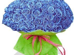 Как выбрать розы и купить их по хорошей цене?