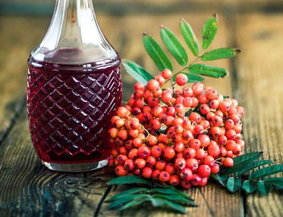 Лучшие рецепты вина из рябины