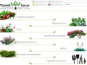 Преимущества саженцев из киевского питомника